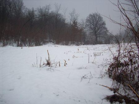 compressa-neve-3-100_58481