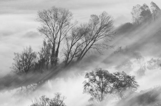 1_35_paesaggio_Nebbia al mattino_S. Maria della Rocchetta_Airuno